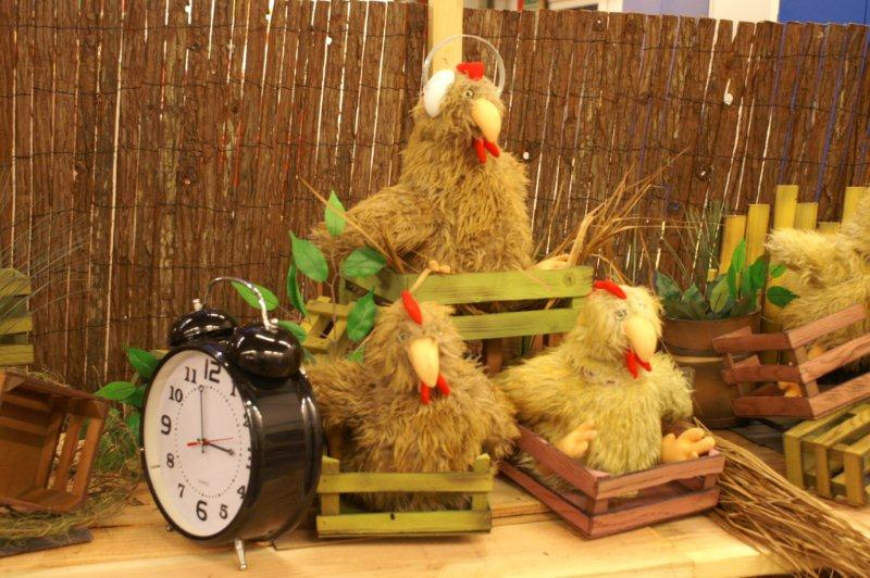 chickens-on-table-1