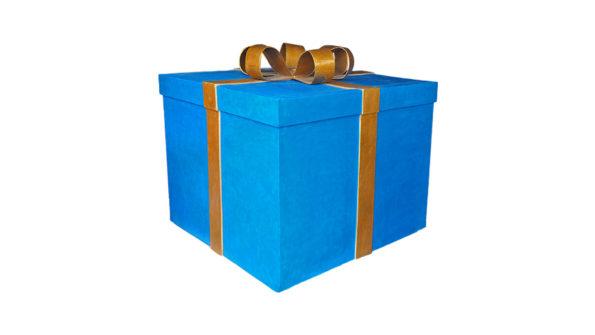 Giant Present